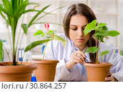 Young beautiful biotechnology chemist working in the lab. Стоковое фото, фотограф Elnur / Фотобанк Лори