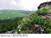 Вид на плато Лаго-Наки с хребта Азиш-Тау, Адыгея. Стоковое фото, фотограф Оглоблин Андрей Николаевич / Фотобанк Лори