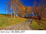 Купить «A country road winds past autumn foliage.», фото № 30884297, снято 10 октября 2012 г. (c) age Fotostock / Фотобанк Лори