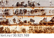 Купить «Rusty garage door. Vintage style. Ideal for backgrounds.», фото № 30921169, снято 19 июля 2019 г. (c) easy Fotostock / Фотобанк Лори