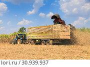 Купить «Sugarcane harvester machine», фото № 30939937, снято 5 февраля 2017 г. (c) easy Fotostock / Фотобанк Лори