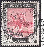 Купить «Почтальон на верблюде (Camelus dromedarius). Почтовая марка Судана 1960 года», иллюстрация № 30948177 (c) александр афанасьев / Фотобанк Лори