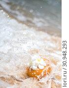 Купить «Fresh young orange coconut with a tube for drinks and Plumeria flowers in a tropical resort near the ocean», фото № 30948293, снято 18 марта 2019 г. (c) katalinks / Фотобанк Лори