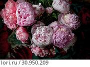 Купить «Букет красивых пионов стоит в вазе на столе», фото № 30950209, снято 15 июня 2019 г. (c) Николай Винокуров / Фотобанк Лори