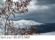 Купить «Winter landscape in overcast weather, view on the gray sky and snowy mountains through the old dry tree, cold and frosty winter, Cedars Mountains, Lebanon», фото № 30973969, снято 5 января 2018 г. (c) easy Fotostock / Фотобанк Лори