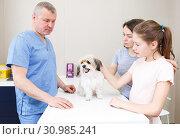 Купить «Worried family with puppy at veterinarian clinic», фото № 30985241, снято 3 мая 2018 г. (c) Яков Филимонов / Фотобанк Лори