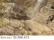 Купить «Sulphur Cave, Wai-O-Tapu, North Island, New Zealand», фото № 30988473, снято 7 июля 2020 г. (c) easy Fotostock / Фотобанк Лори