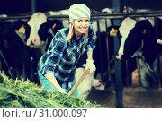 Купить «Female farmer collecting grass for cows», фото № 31000097, снято 23 января 2020 г. (c) Яков Филимонов / Фотобанк Лори