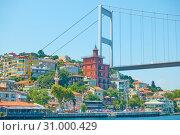 Купить «Waterfront in Istanbul», фото № 31000429, снято 17 июля 2018 г. (c) Роман Сигаев / Фотобанк Лори