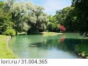 Английский сад (нем. Englischer Garten) или Английский парк. Лето. Мюнхен. Германия (2019 год). Редакционное фото, фотограф E. O. / Фотобанк Лори