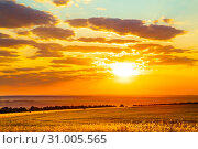 Купить «Saratov region, travel, landscape and nature of Russia. Yellow golden orange dramatic beautiful sunrise at dawn or dusk over endless fields, hills and meadows. The sun rises over the horizon in the morning or sets in the evening», фото № 31005565, снято 23 июня 2019 г. (c) Светлана Евграфова / Фотобанк Лори