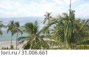 Купить «View of the beach in the tropical resort. A palm grove and the sandy coast, Aero shooting from the drone», видеоролик № 31006661, снято 14 июня 2018 г. (c) Куликов Константин / Фотобанк Лори