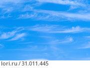 Купить «Background - blue sky with cirrus clouds», фото № 31011445, снято 21 июня 2019 г. (c) Евгений Харитонов / Фотобанк Лори