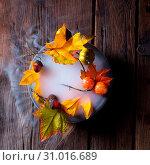 Купить «Autumn leaves in the mist», фото № 31016689, снято 18 июля 2019 г. (c) easy Fotostock / Фотобанк Лори