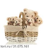 Купить «Group stuffed bears together in wicker basket isolated over white background», фото № 31075161, снято 2 декабря 2015 г. (c) easy Fotostock / Фотобанк Лори
