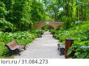 Аллея и Каменный мост в Нескучном саду. Москва (2019 год). Стоковое фото, фотограф Александр Щепин / Фотобанк Лори
