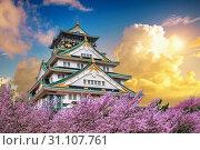 Купить «Osaka Castle and Cherry blossom at sunset in spring. Sakura seasons in Osaka, Japan.», фото № 31107761, снято 15 февраля 2018 г. (c) easy Fotostock / Фотобанк Лори