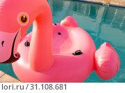 Pink flamingo bird shape inflatable tube floating in a swimming pool. Стоковое фото, агентство Wavebreak Media / Фотобанк Лори