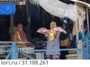 Купить «Asie, Indonésie, Bornéo,Kalimantan, Ville de Kumai, marché aux poissons, femme montrant n poisson/ Asia, Indonesia, Borneo, Tanjung Puting National Park,Town of Kumai, Fishmarket, woman showing fish.», фото № 31188261, снято 24 октября 2018 г. (c) age Fotostock / Фотобанк Лори