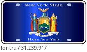 New York state license plate in the colors of the state flag with the flag icons over a white background. Стоковое фото, фотограф YAY Micro / easy Fotostock / Фотобанк Лори