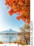 Mt. Fuji in autumn at Kawaguchiko or lake Kawaguchi in Fujikawaguchiko Japan. Стоковое фото, фотограф Zoonar.com/Vichaya Kiatying-Angsulee / easy Fotostock / Фотобанк Лори