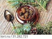 Купить «Homemade medicinal jam from pine cones.Natural Medicine», фото № 31282721, снято 15 августа 2018 г. (c) easy Fotostock / Фотобанк Лори