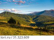 Купить «Grassy rural hillside at cloudy sunset. beautiful mountainous countryside in autumn», фото № 31323609, снято 15 сентября 2017 г. (c) easy Fotostock / Фотобанк Лори