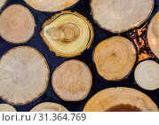 Купить «Wood Log cut in round thin pieces in view», фото № 31364769, снято 25 ноября 2017 г. (c) easy Fotostock / Фотобанк Лори