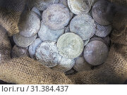 Sack full of recovered silver spanish coins recovered from sunken ship. ARQUA Museum, Spain. (2018 год). Редакционное фото, фотограф Juan García Aunión / age Fotostock / Фотобанк Лори