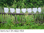 Купить «Washed female underpants of a big size are being dried on the old wooden fence outdoors», фото № 31422153, снято 7 июля 2019 г. (c) Георгий Дзюра / Фотобанк Лори