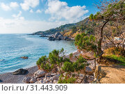 Купить «Mountains and the sea - picturesque landscapes on a sunny autumn day», фото № 31443909, снято 7 ноября 2017 г. (c) easy Fotostock / Фотобанк Лори