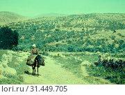 Jaffa to Jerusalem, Ascent to Beth Horon. 1950, West Bank, Israel (2018 год). Редакционное фото, фотограф © Liszt Collection / age Fotostock / Фотобанк Лори