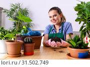 Купить «Young female gardener with plants indoors», фото № 31502749, снято 26 ноября 2018 г. (c) Elnur / Фотобанк Лори