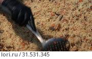 Купить «Приготовление традиционного восточного плова», видеоролик № 31531345, снято 15 июля 2019 г. (c) А. А. Пирагис / Фотобанк Лори