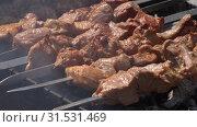 Купить «Шашлыки», видеоролик № 31531469, снято 15 июля 2019 г. (c) А. А. Пирагис / Фотобанк Лори