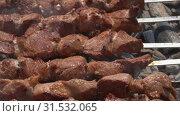 Купить «Шашлыки из свинины крупным планом», видеоролик № 31532065, снято 15 июля 2019 г. (c) А. А. Пирагис / Фотобанк Лори