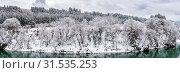 Купить «Snow forest in winter landscape», фото № 31535253, снято 10 апреля 2020 г. (c) easy Fotostock / Фотобанк Лори