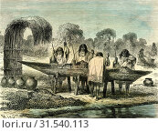 Oil production of turtle eggs by Conibos, 1869, Peru (2013 год). Редакционное фото, фотограф Artokoloro / age Fotostock / Фотобанк Лори