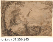 Купить «Skeleton Hanging from a Tree in a Landscape, late 16th–early 17th century, Black chalk, pen and brown ink, brush and brown and blue wash, sheet: 7 1...», фото № 31556245, снято 21 мая 2017 г. (c) age Fotostock / Фотобанк Лори