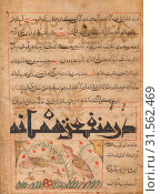Купить «On the Benefits of Quails (verso) from a Manafi' al-Hayawan (On the Usefulness of Animals) of Ibn Bakhtishu' (d. 1058), c. 1300. Iran, probably Maragah...», фото № 31562469, снято 13 февраля 2019 г. (c) age Fotostock / Фотобанк Лори