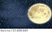Купить «Full moon and falling snow», видеоролик № 31699641, снято 2 ноября 2018 г. (c) Wavebreak Media / Фотобанк Лори