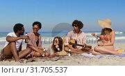 Купить «Group friends having fun at beach 4k», видеоролик № 31705537, снято 9 января 2019 г. (c) Wavebreak Media / Фотобанк Лори