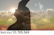 Купить «Silhouette of a woman meditating», видеоролик № 31705569, снято 17 апреля 2019 г. (c) Wavebreak Media / Фотобанк Лори