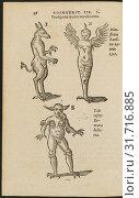 Купить «Amazing Monsters, De naturae diuinis characterismis, seu, Raris and admirandis spectaculis, causis, indiciis, proprietatibus rerum in partibus singulis...», фото № 31716885, снято 7 сентября 2018 г. (c) age Fotostock / Фотобанк Лори