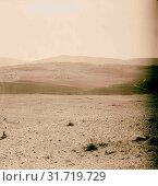 Beth Shemeth, May 1931. 1931, Israel, Bet-Shemesh (Extinct city) (2018 год). Редакционное фото, фотограф © Liszt Collection / age Fotostock / Фотобанк Лори