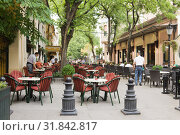 Купить «Уличное кафе под сенью деревьев в городе Суботице в Сербии», фото № 31842817, снято 31 августа 2012 г. (c) Солодовникова Елена / Фотобанк Лори