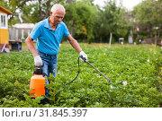 Купить «Man works with garden spray in the yard», фото № 31845397, снято 19 октября 2019 г. (c) Яков Филимонов / Фотобанк Лори
