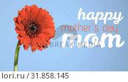 Mothers day with flower. Стоковое видео, агентство Wavebreak Media / Фотобанк Лори