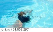 Купить «Side view of young mixed-race woman taking a dip in swimming pool on a sunny day 4k», видеоролик № 31858297, снято 7 ноября 2018 г. (c) Wavebreak Media / Фотобанк Лори