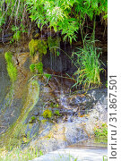 "Купить «Ecology and nature. The source of clean drinking spring water among stone rocks and moist fresh green moss. Spring ""Wailing Wall"" in the Saratov region village Gremyachka», фото № 31867501, снято 6 июля 2019 г. (c) Светлана Евграфова / Фотобанк Лори"
